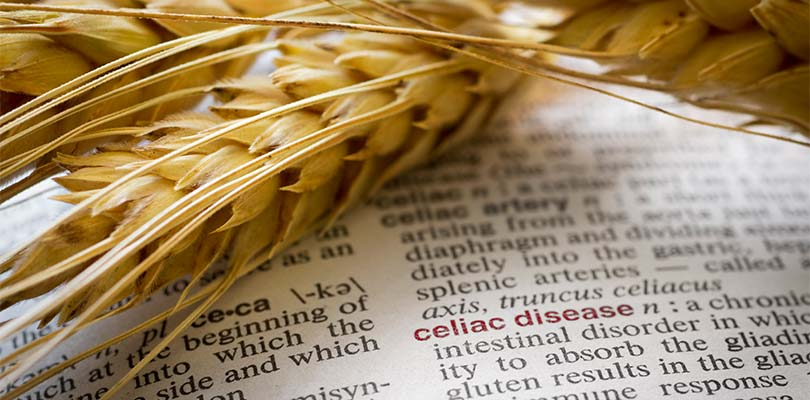 Strands of grain on a textbook page talking about celiac.