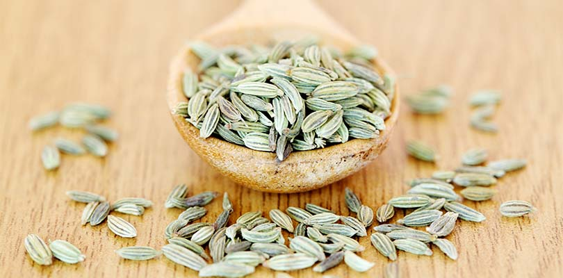 A spoonful of fennel resting on wooden table.